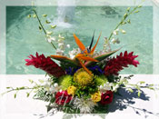 Tropical Splash Flower Arrangement