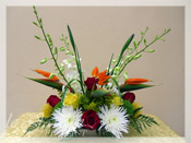 Tropicana :: Tropical Flower Arrangement