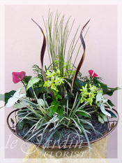 Orchidia - Orchids & Live Plants :: a Signature Floral Arrangement