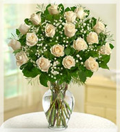 2 Dz Premium Long Stem White Roses Arrangement